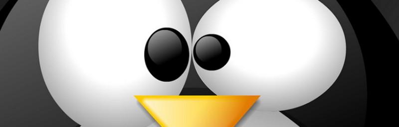Linux или Windows?